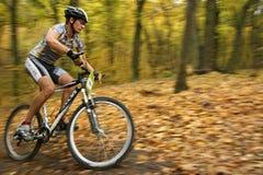 赞成骑自行车的人迷离 免版税库存照片