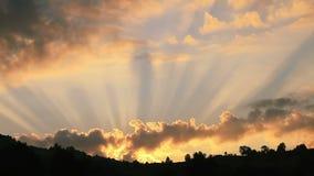 赞美诗143:8圣经诗歌 股票录像