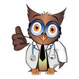 赞许博士猫头鹰 免版税库存图片