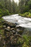 赢利地区小河, Girdwood,阿拉斯加 免版税库存照片