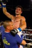 赢利地区爱好者和职业拳击 免版税库存图片