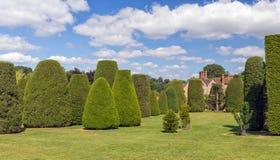 赤柏松庭院, Packwood议院,沃里克郡,英国 库存照片