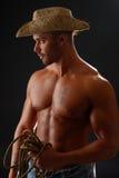 赤裸上身的牛仔 库存照片