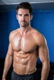 赤裸上身的男性运动员画象健身房的 库存图片