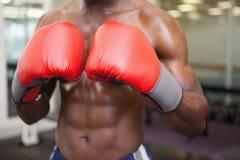 赤裸上身的肌肉拳击手的中间部分 免版税库存图片