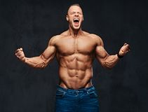 赤裸上身的肌肉男性画象在的牛仔裤 免版税库存照片
