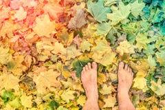 赤裸在叶子公园赤足研了-自由旅行癖心情 免版税库存照片