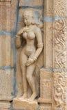 赤裸妇女雕象Shirangam寺庙的 库存照片