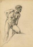 赤裸妇女 向量例证