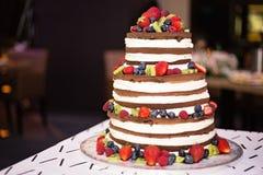 赤裸层状巧克力蛋糕冠上用果子 库存照片