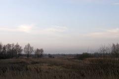 赤裸树和干草在秋天晚上草甸 免版税图库摄影