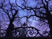赤裸结构树 免版税库存照片