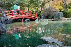 赤褐色植物园,日本禅宗庭院部分 库存图片