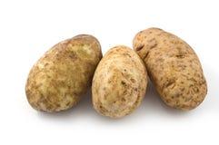 赤褐色的土豆 库存图片