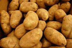 赤褐色金的土豆 免版税库存图片