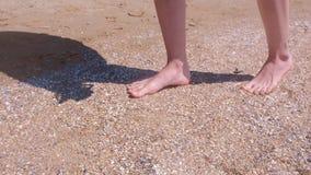 赤足妇女在沙滩的海壳走做自然脚按摩 股票视频