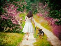 赤足走与狗的少妇 免版税库存照片