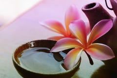 从赤素馨花,在瓶子的羽毛的花束黏土与弄脏了a 库存照片