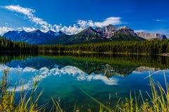 赫伯特湖 库存图片