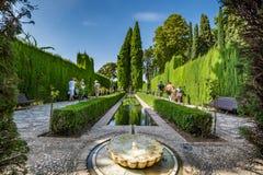 赫内拉利费宫庭院的看法在阿尔罕布拉宫 库存照片