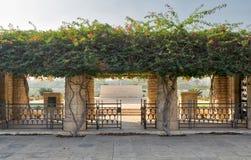 赫利奥波利斯联邦有篱芭金属门的,登山人绿色植物,开罗,埃及战争公墓入口  免版税库存照片