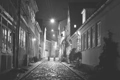 赫尔新哥在丹麦 免版税库存照片