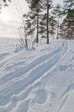 赫尔辛基滑雪跟踪 免版税图库摄影