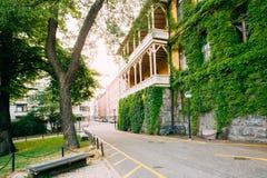 赫尔辛基,芬兰 议院墙壁有被盖的绿色常春藤的 库存照片