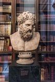 赫拉克勒斯罗马胸象,大英博物馆,伦敦 免版税库存图片