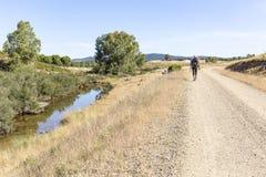 走一条乡下公路在los Berrocales自然公园在山脉Norte,塞维利亚的香客 库存照片