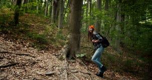 走上升在森林里的妇女 股票视频