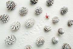 走与一个袋子的圣诞老人在雪盖的森林里 CH 库存照片