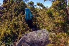 走与在山风景的伟大的背包的人们-迁徙远足mountaneering在mantiqueira范围巴西 免版税图库摄影