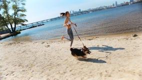 走与在沙滩的逗人喜爱的三色威尔士小狗狗的美丽的年轻亭亭玉立的运动妇女在晴朗的早晨 影视素材