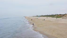 走与在狗海滩加州的狗的人 影视素材