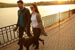 走与在街道上的一条狗的年轻夫妇 免版税库存图片