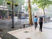 走与在重的暴雨的伞的人们在市中心 免版税图库摄影