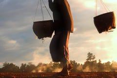 走与在领域的一个篮子的妇女 免版税库存照片