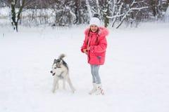走与在winte的一条西伯利亚爱斯基摩人品种狗的小女孩 免版税库存图片