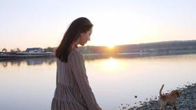 走与她在自然的逗人喜爱的狗的可爱的年轻女人在湖附近 股票录像