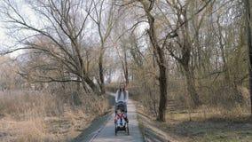走与婴儿推车的一个女婴的年轻母亲在公园 影视素材