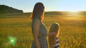 走与小白肤金发的女儿和握手的年轻母亲,看日落、麦子美丽的景色或黑麦 影视素材