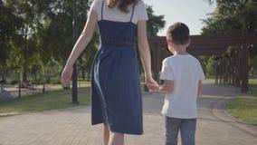 走与弟弟的姐姐握手在夏天公园 户外休闲 之间友好的联系 股票视频
