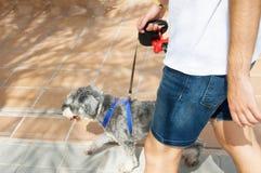 走与狗的一个人的细节 免版税图库摄影