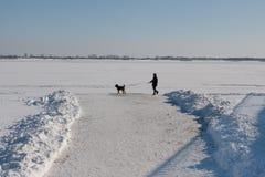 走与狗的一个人 免版税库存照片