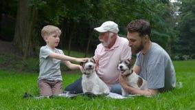 走与狗的多代家庭 爸爸爷爷和儿子有获得杰克罗素的狗的乐趣,笑,亲吻 股票录像