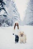 走与狗的小女孩 库存图片