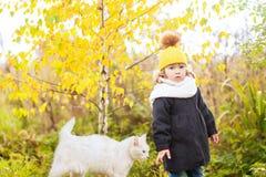 走与猫的逗人喜爱的小孩女孩户外,冷的天 库存图片
