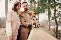 走与起重器罗素狗狗一起的年轻愉快的浪漫夫妇在秋天 免版税库存照片