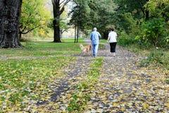走与他们的狗的资深夫妇在公园 免版税库存图片